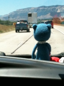 Blue Cat on the Road